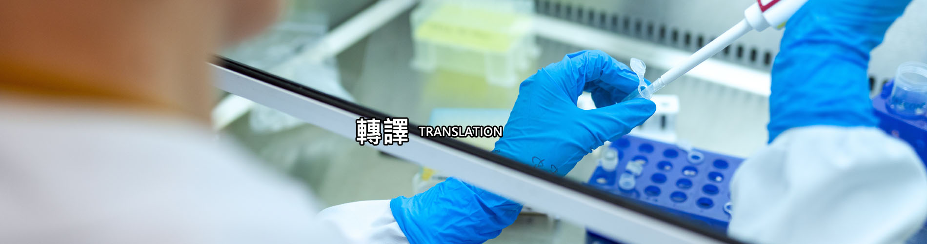 Biomedical Translation Research Center